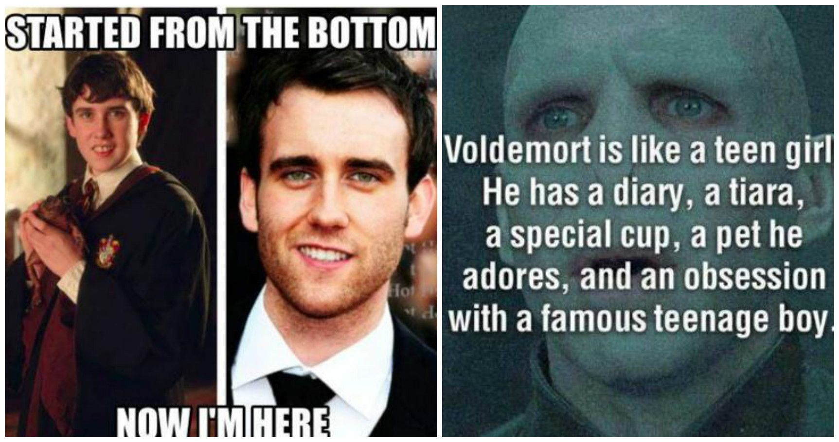 Funny Memes For Teens : Hilarious harry potter memes only true fans will understand